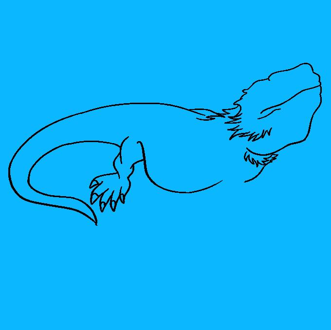 How to Draw Bearded Dragon Lizard: Step 5