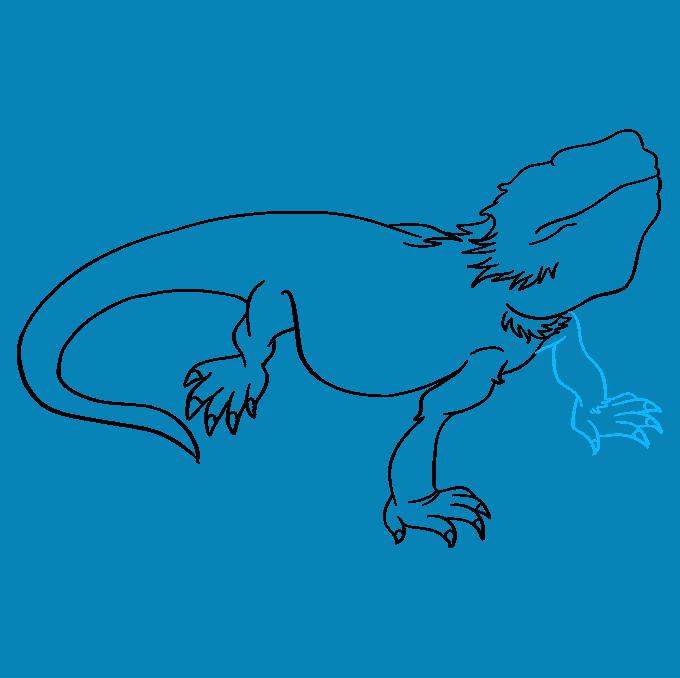 How to Draw Bearded Dragon Lizard: Step 6