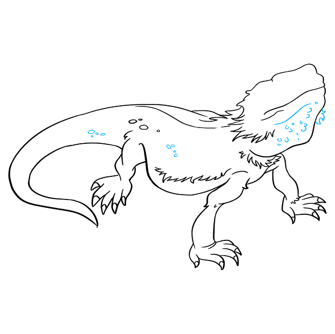 How to Draw Bearded Dragon Lizard: Step 8