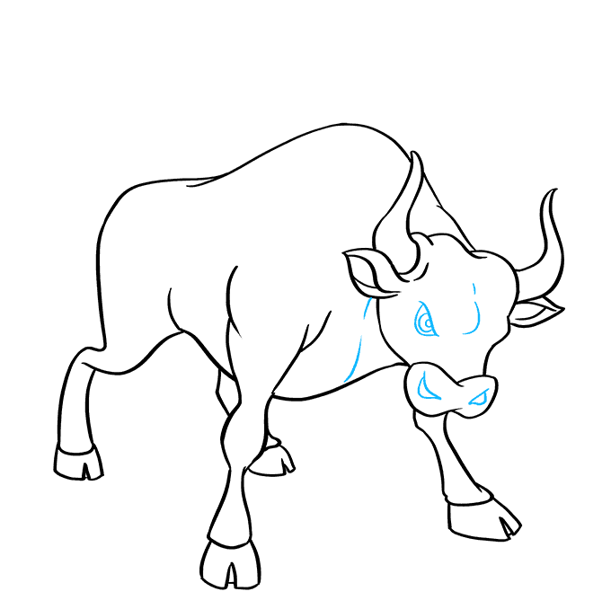 How to Draw Bull: Step 8