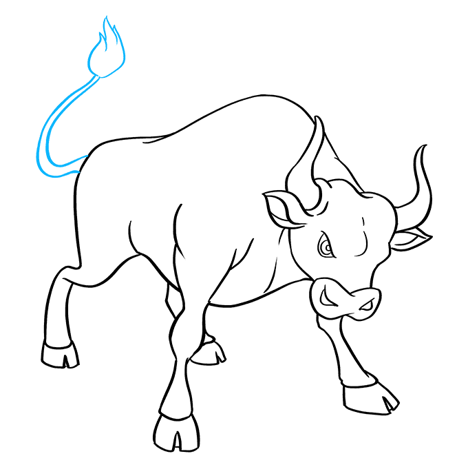 How to Draw Bull: Step 9