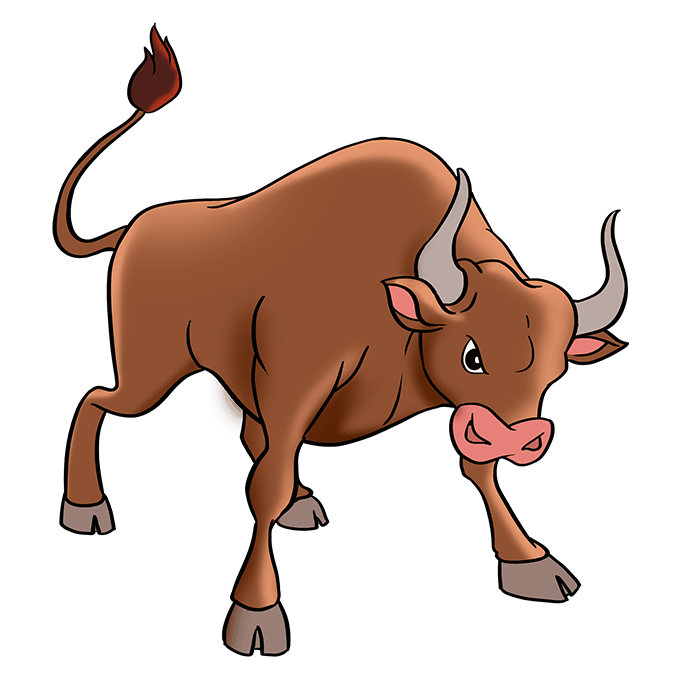 How to Draw a Bull Step 10