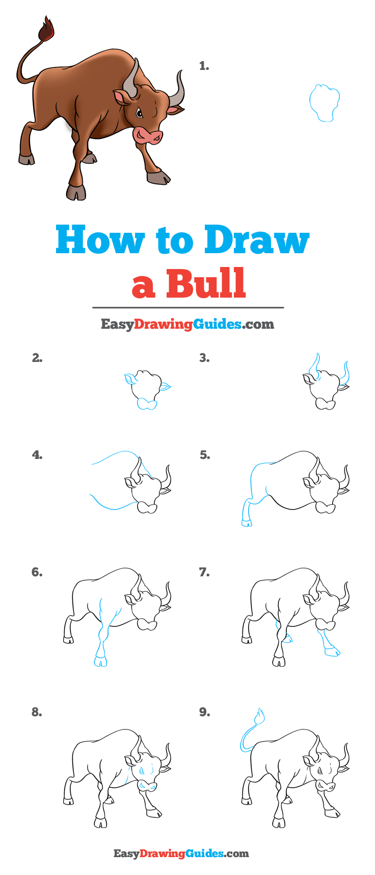 How to Draw a Bull Step by Step Tutorial Image