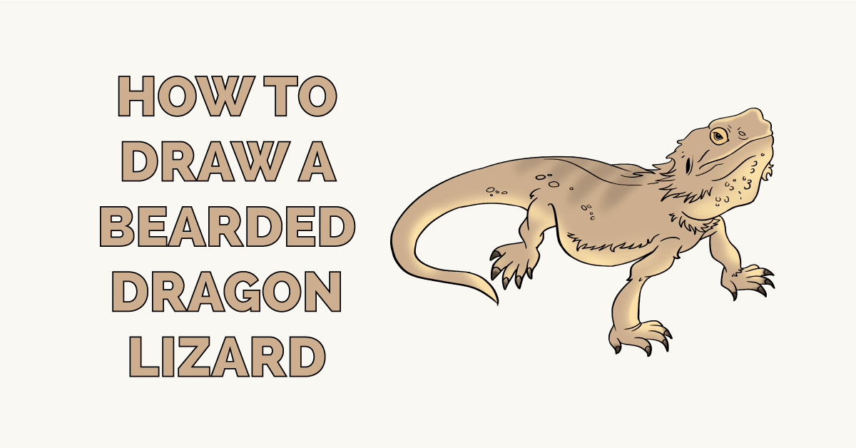 How to Draw a Bearded Dragon Lizard Featured Image