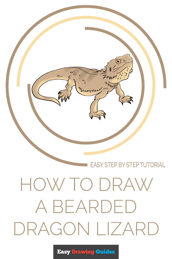 How to Draw Bearded Dragon Lizard | Share to Pinterest