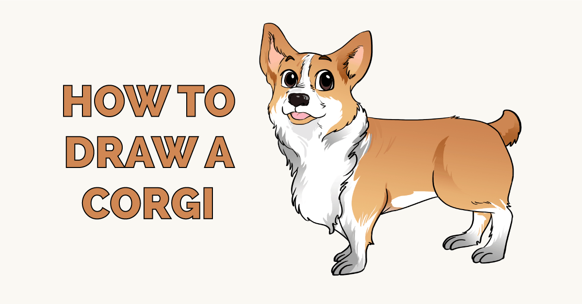 How to Draw a Corgi Featured Image