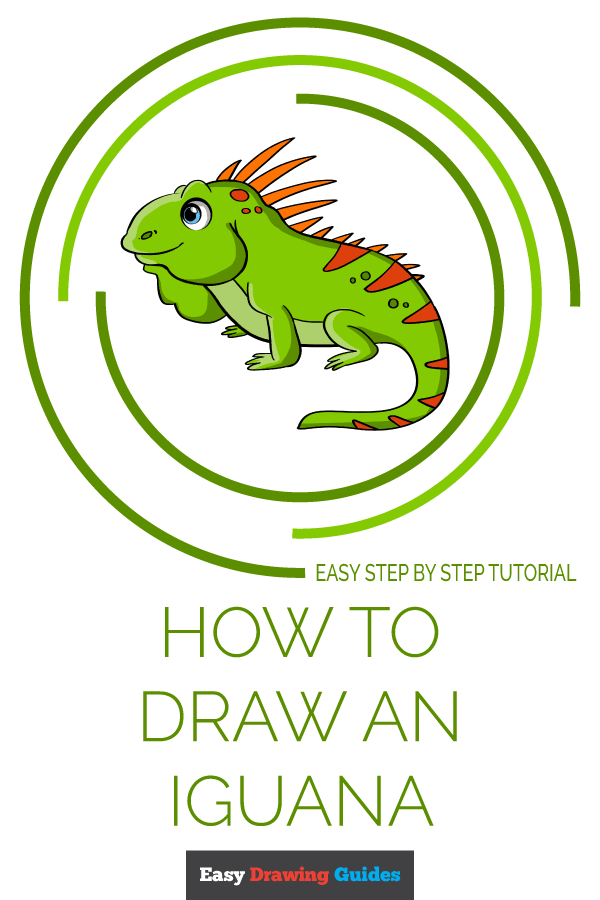 How to Draw Iguana | Share to Pinterest