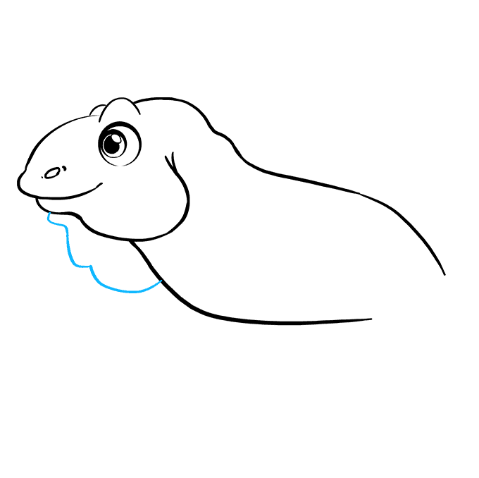 How to Draw Iguana: Step 6