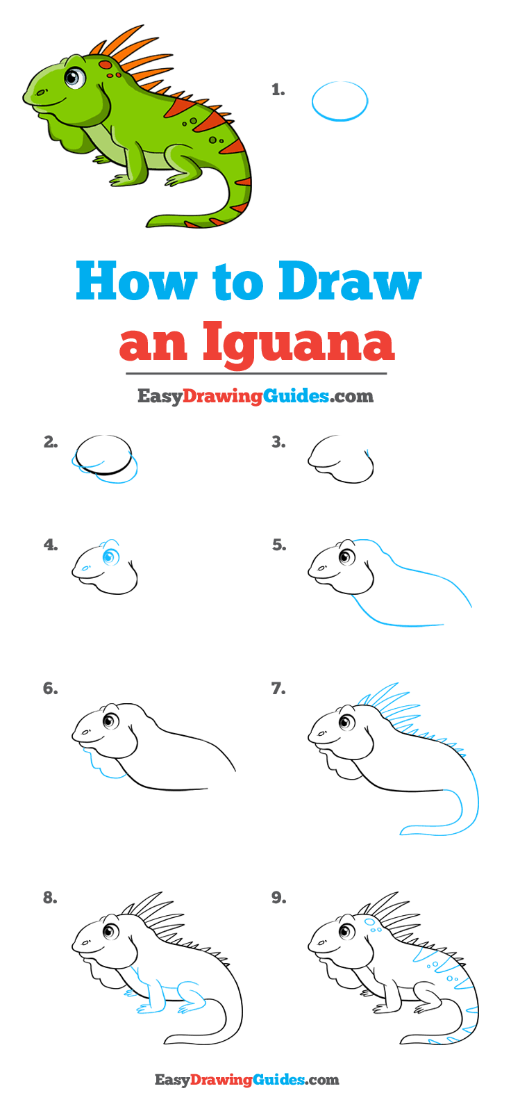 How to Draw Iguana
