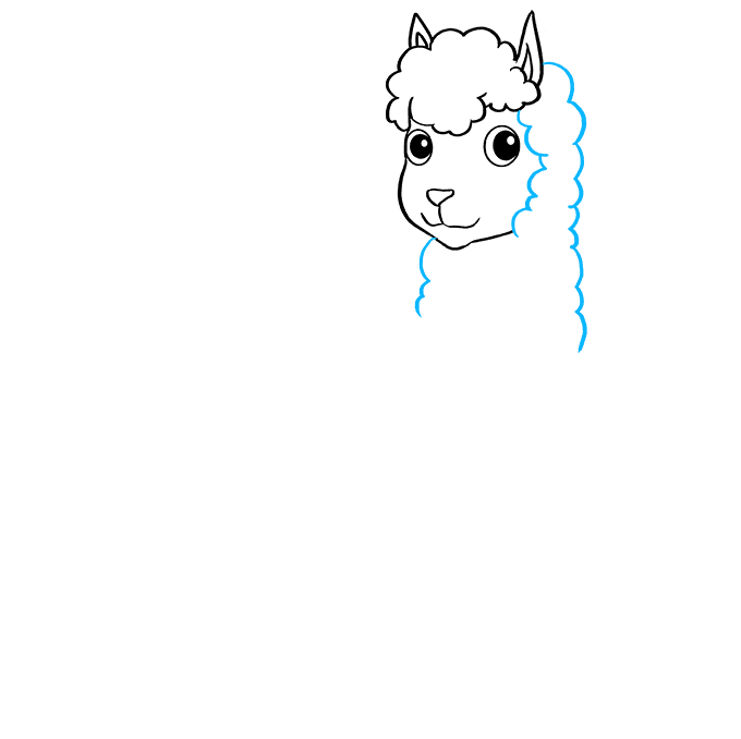How to Draw Llama: Step 3