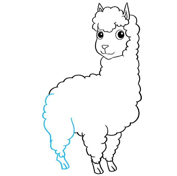 How to Draw Llama: Step 7