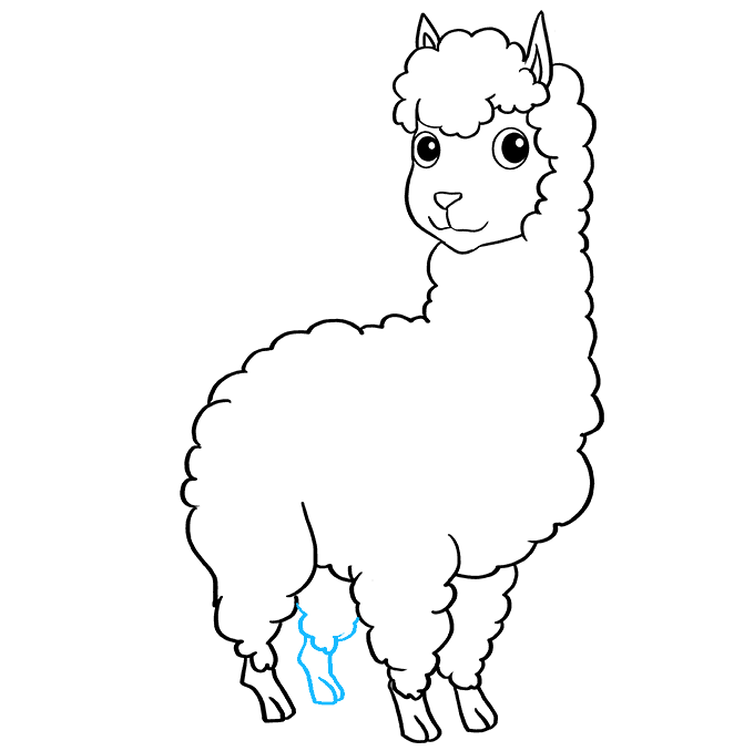 How to Draw Llama: Step 8
