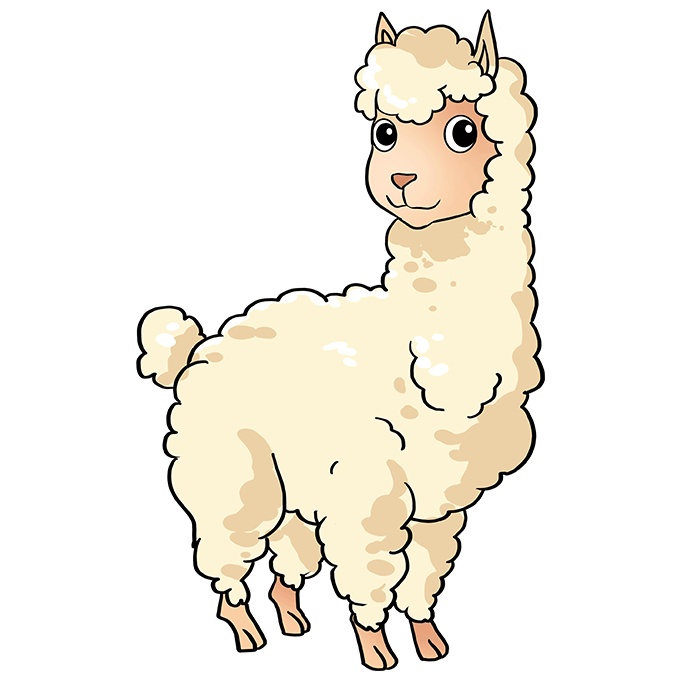 How to Draw Llama: Step 10