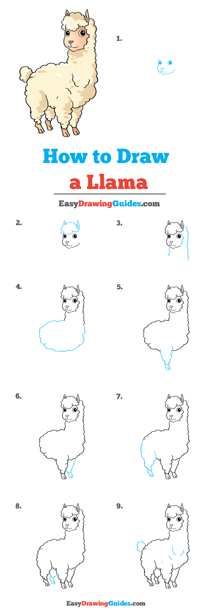 How to Draw Llama