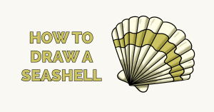 How to Draw a Seashell Featured Image