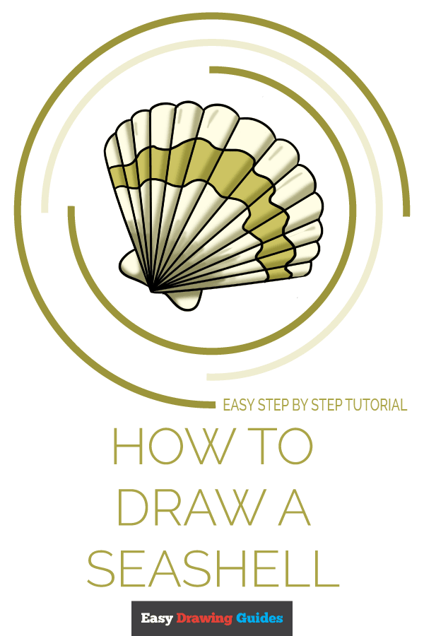 How to Draw a Seashell Pinterest Image