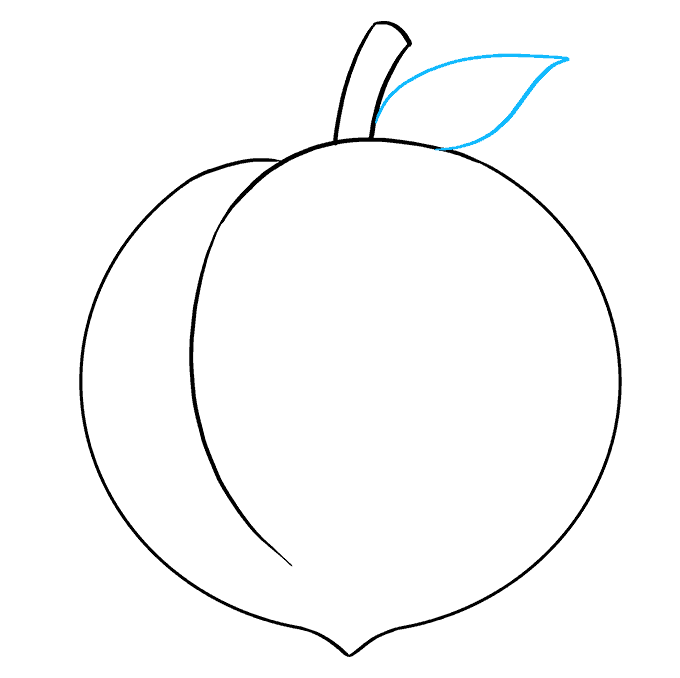 How to Draw Peach: Step 6