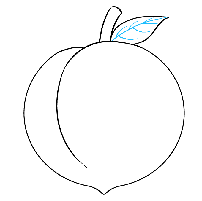 How to Draw Peach: Step 7