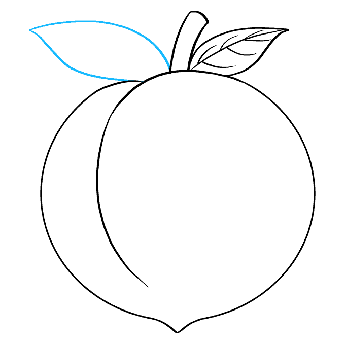 How to Draw Peach: Step 8