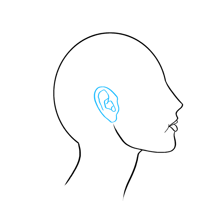 How to Draw a Woman Side Profile Step 06