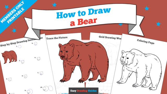 download a printable PDF of Bear drawing tutorial