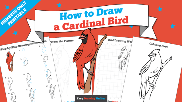 download a printable PDF of Cardinal Bird drawing tutorial