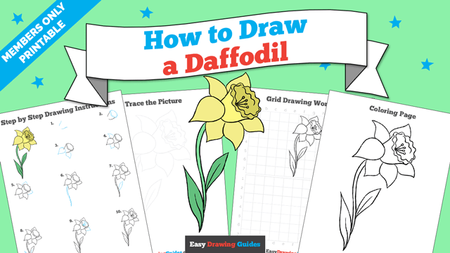 Printables thumbnail: How to draw a Daffodil