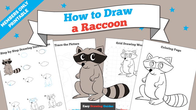 download a printable PDF of Raccoon drawing tutorial