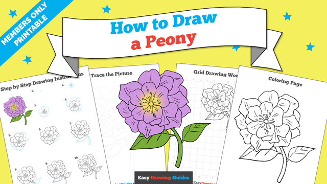download a printable PDF of Peony drawing tutorial