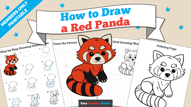 download a printable PDF of Red Panda drawing tutorial
