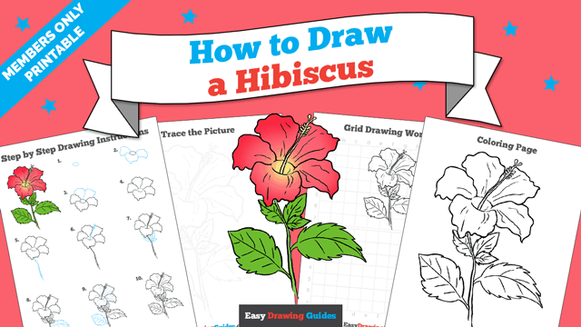 download a printable PDF of Hibiscus drawing tutorial