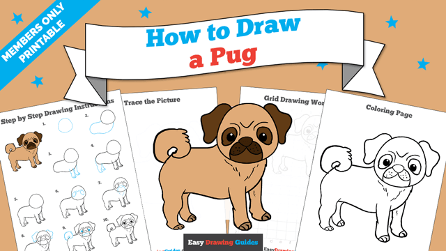 download a printable PDF of Pug drawing tutorial