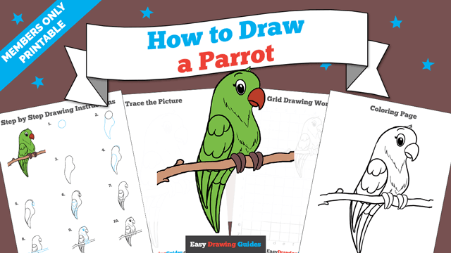 download a printable PDF of Parrot drawing tutorial