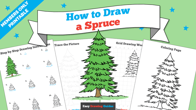 download a printable PDF of Spruce drawing tutorial