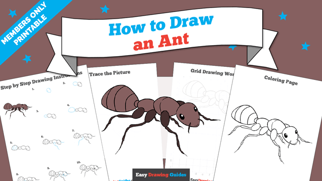 download a printable PDF of Ant drawing tutorial
