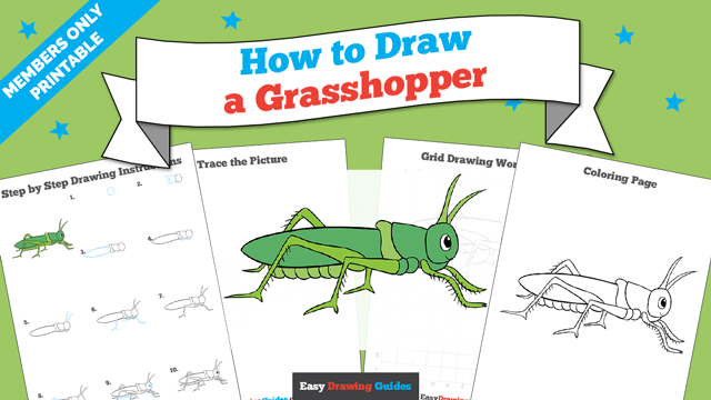 download a printable PDF of Grasshopper drawing tutorial