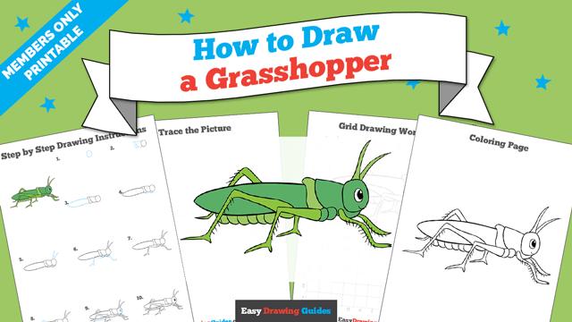 Printables thumbnail: How to draw a Grasshopper