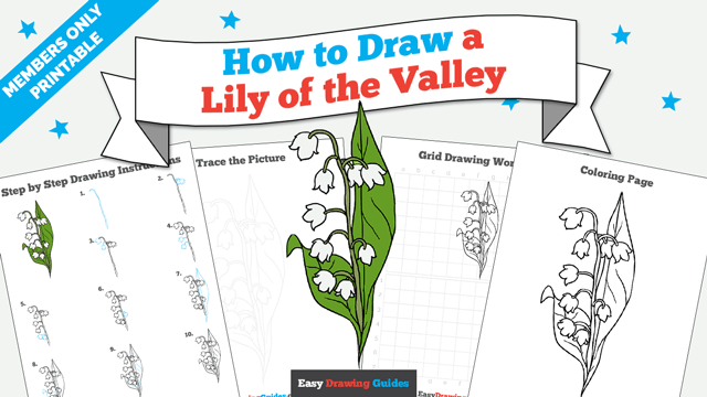 download a printable PDF of Lily of the Valley drawing tutorial
