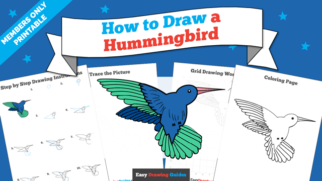 download a printable PDF of Hummingbird drawing tutorial