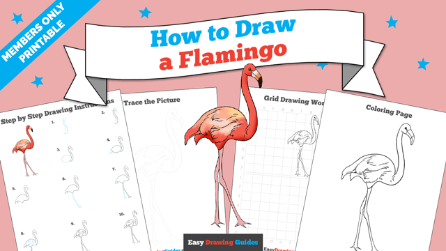 download a printable PDF of Flamingo drawing tutorial
