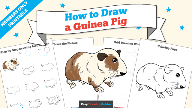 download a printable PDF of Guinea Pig drawing tutorial