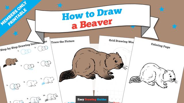 download a printable PDF of Beaver drawing tutorial