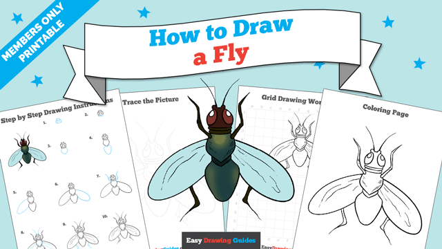 download a printable PDF of Fly drawing tutorial