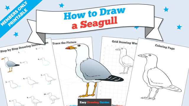 download a printable PDF of Seagull drawing tutorial