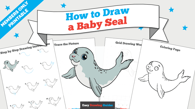 download a printable PDF of Baby Seal drawing tutorial