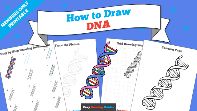 Printables thumbnail: How to draw DNA