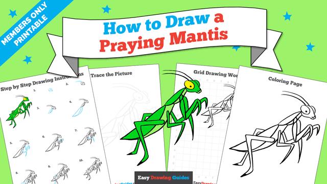 download a printable PDF of Praying Mantis drawing tutorial