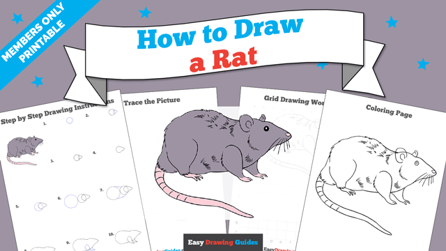 Printables thumbnail: How to draw a Rat
