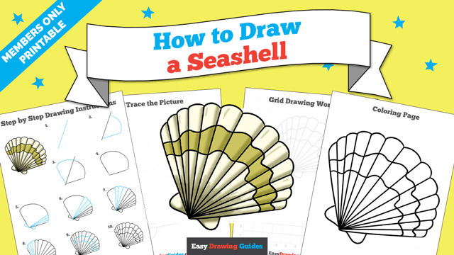 download a printable PDF of Seashell drawing tutorial