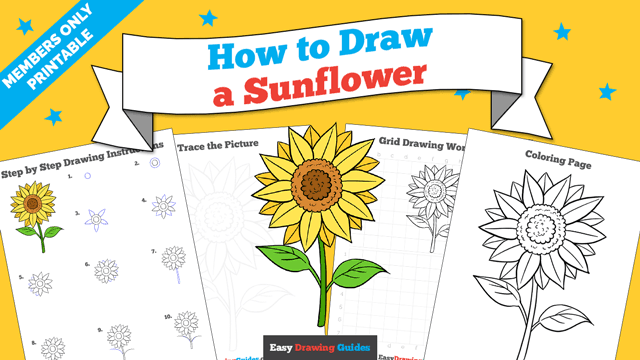 download a printable PDF of Sunflower drawing tutorial